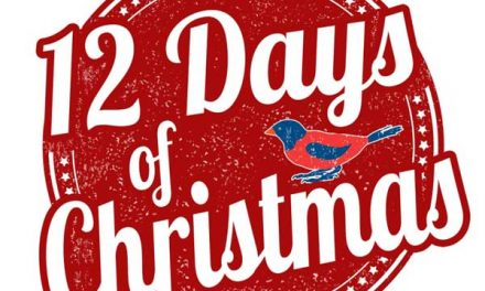 12 Wedding Tips of Christmas – Day 1: Don't Sweat the Small Stuff