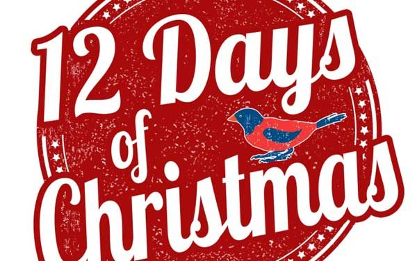 12 Wedding Tips of Christmas – Day 12: Enjoy!